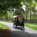 Limerick Carriage Tours