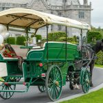 Limerick Carriage Tours @Adare Manor